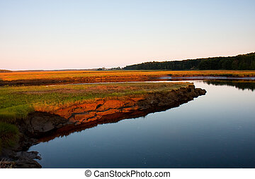 Salt marsh - The Scarborough salt marsh at low tide.