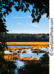 Salt marsh - Framed shot of a salt marsh in Scarborough,...