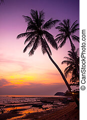 Palm tree silhouette on sunset tropical beach Thailand -...