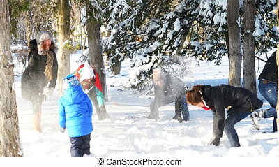 Playing in Snow - A group of young people playing in the...