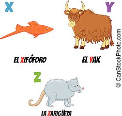 abc7 - spanish abc with different animals: yak, fish and...
