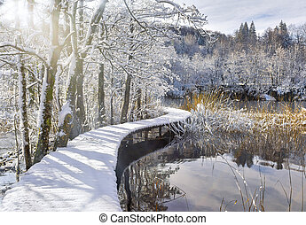 Snowy Catwalk Over the Pond - Snow-covered boardwalk over...