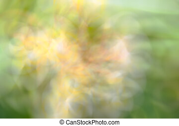 green and yellow color tone abstract - the abstract of green...
