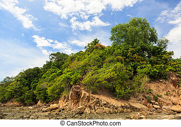 Green forest on rocky shore in sapi island malaysia