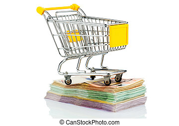 shopping cart on bills - shopping cart stands on banknotes,...
