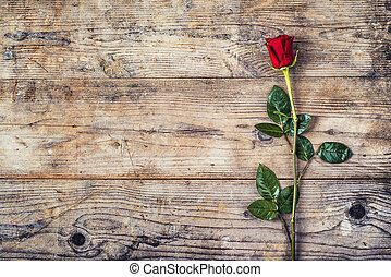 Red rose on a wooden floor - Valentine´s day composition of...