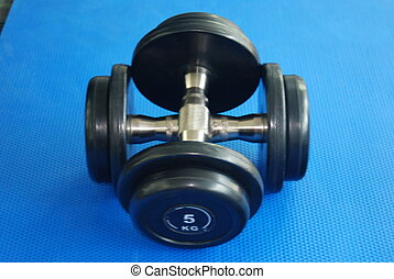 Free Weights - Free weights in a gym