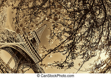 Eiffel Tower with spring tree in Paris, France - Famous...