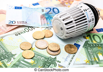 Energy saving - Heating thermostat with money, expensive...