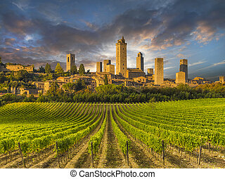 Vineyards of Tuscany, Italy, with the town of San Gimignano...