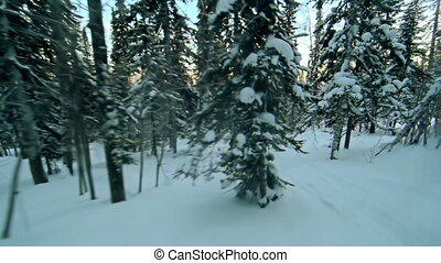 Breathtaking Activity - Point of view shot of rider skiing...