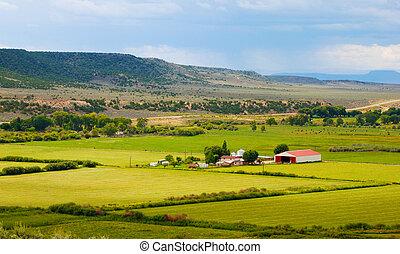 Little Farm in the Desert - Little farm in the high desert...