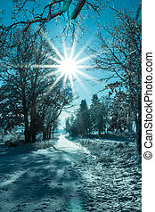 Winter landscape view fields forests covered snow rays sun -...