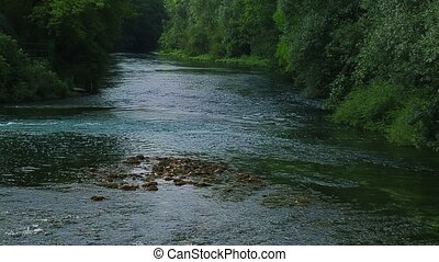 Krka river flow thru beautiful green summer nature