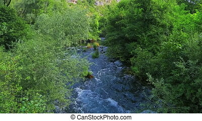 Krka river flow through the bushes - Krka river flow thru...