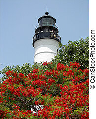 Lighthouse Key West - Key West Lighthouse in Summer,...