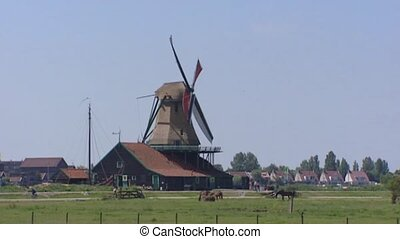 Windmill Zaanse Schans, Holland, wicks turning - Windmill de...