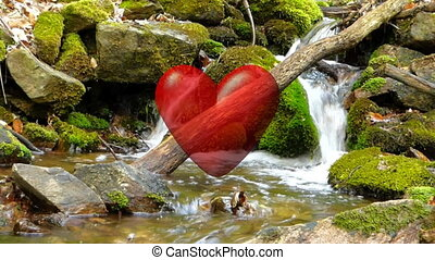 Love heart in forest creek video - Love heart in forest...