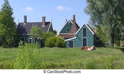 Zaanse Schans, Holland, traditional green white painted...