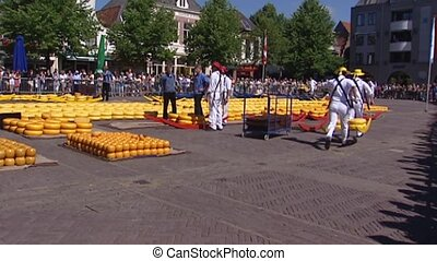 Alkmaar traditional chees market, cheese bearers carrying...