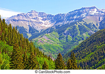 Mountains and forests surrounding Telluride, Colorado...