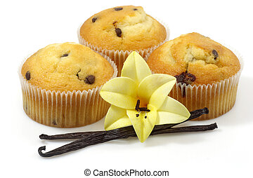 Vanilla muffins - Muffins with vanilla beans on bright...