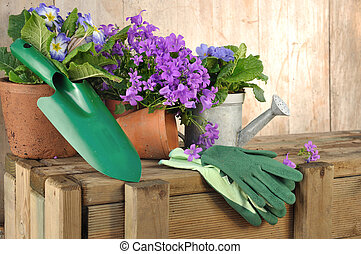 flowers and gardening tools - flowers pot and gardening...