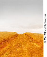 Empty Rural Road - Empty rural road with dry grass on the...