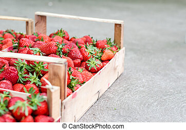 Home grown strawberries in a wooden basket (crate). Vertical...