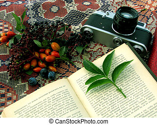 Book berry leafs camera book and narure