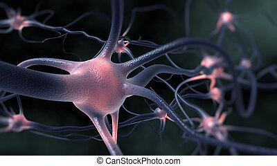 Neurons - Excitation of the nervous system