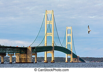 Mighty Mac and Seagull - A seagull flies near the Mackinac...
