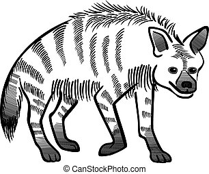 Striped Hyena - vector line drawing a striped hyena