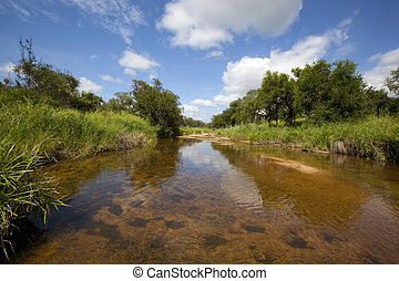 Tranquil Scene - Tranquil, Scenic river in the african bush