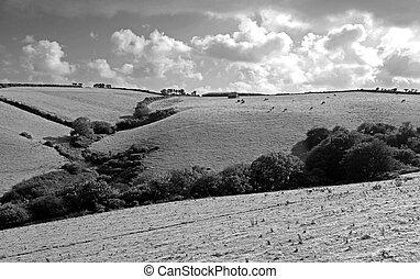 Farm land rural view