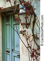 Rosebud on the facade of an old house