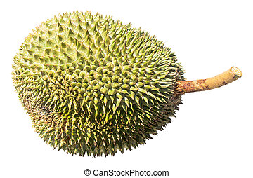 delicious fresh durian isolated on white background