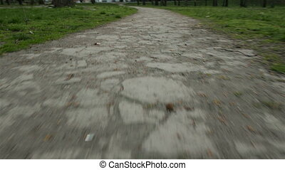 Walking path in the park