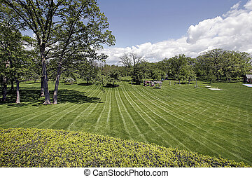 Landscaped grounds of luxury home - Large landscaped grounds...
