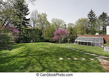 Back yard during spring