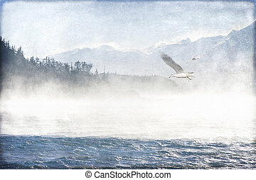 Riding the Wind - Seagulls in Southeast Alaska overlaid with...