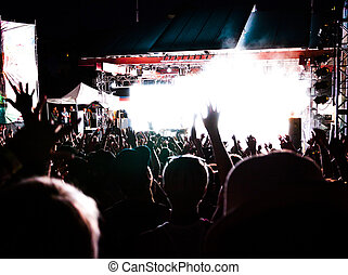 Hands Held Up High at a Concert Photo
