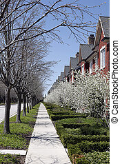 Townhouses in early spring - Row of townhouses in early...