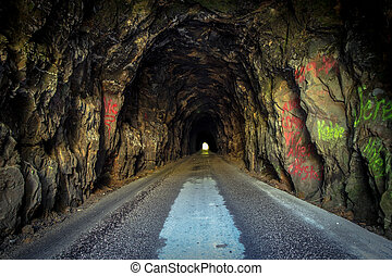 The Way Forward - The nine hundred foot Nada Tunnel located...