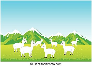 Herd sheep in field - Vector illustration herd sheep on year...