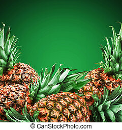 pineapples - Fresh tropical pineapples on green background