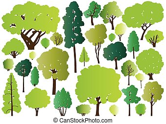 Forest trees silhouettes