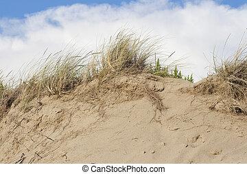beach sand dunes against sky - beach sand dunes closeup...