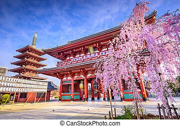 Sensoji Temple - Tokyo, Japan at Sensoji Temple's Hozomon...