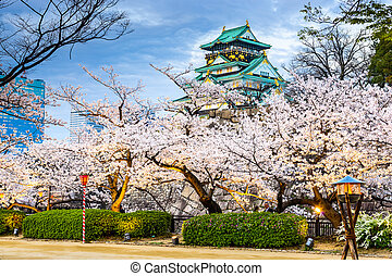 Osaka, japón, en, Osaka, castillo, Durante, el,...